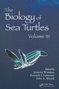 Sea turtle book cover - med res med size